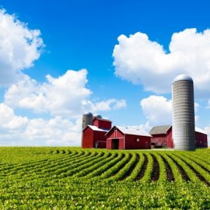 3 Succession Solutions for Family Farms